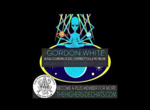 Gordon White | Mutual Flourishing In 2020, Conspiracy Yoga, & The Timeline