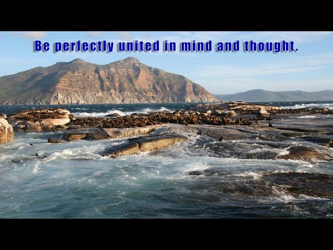 Be perfectly united in mind and thought.
