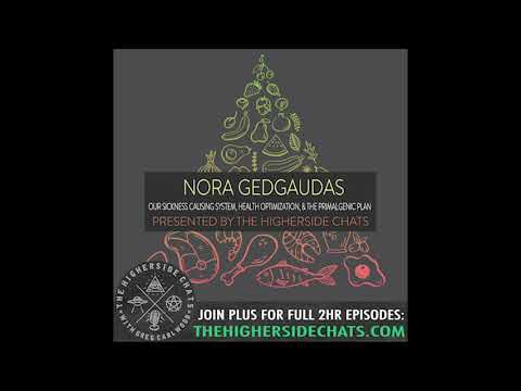 Nora Gedgaudas | Our Sickness Causing System, Health Optimization, & The Primalgenic Plan
